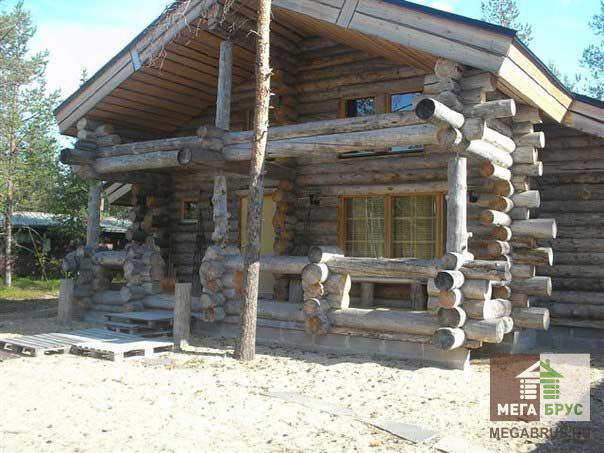 Дом построенный из сухостоя